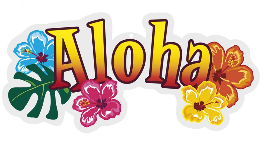 Aloha-Colorful-Flowers-Picture